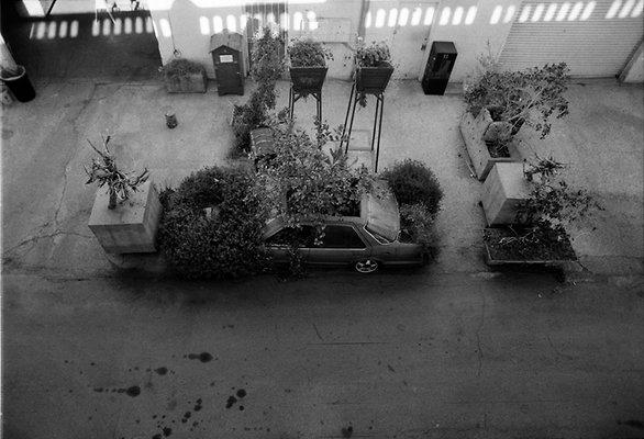 FARMLAB Spring and Aroura st LA 1-6-2012 2